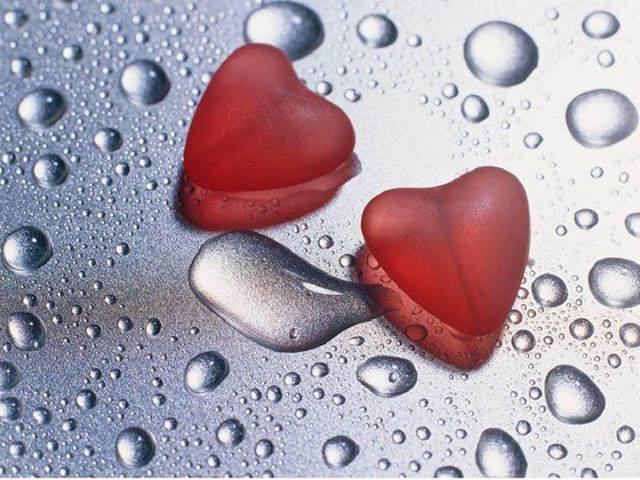 Deux coeurs, un amour, deux vies et un chemin