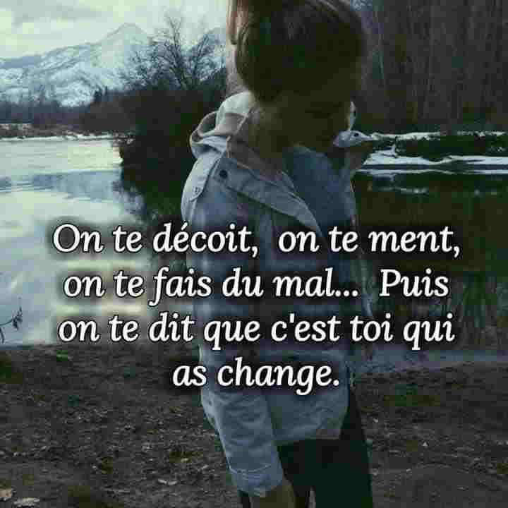 On te déçoit , on te fait mal , puis on te dit que c'est toi qui a changé .