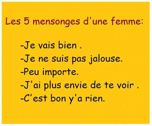 Les 5 mensonges d'une femme: